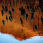 Lago di Segrino (Triangolo Lariano, Lombardia) Il lago e la montagna, il giorno e l'imbrunire.
